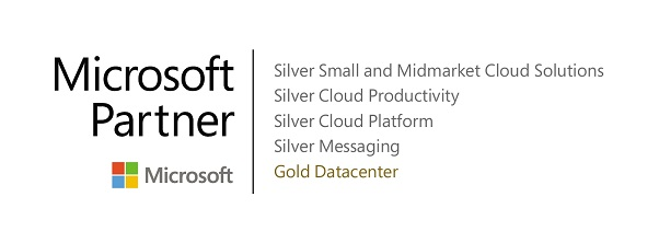 MS Kompetenz Logo Silber