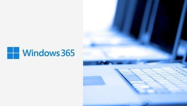 Cloud-PC Windows 365 von Microsoft für hybrides Arbeiten
